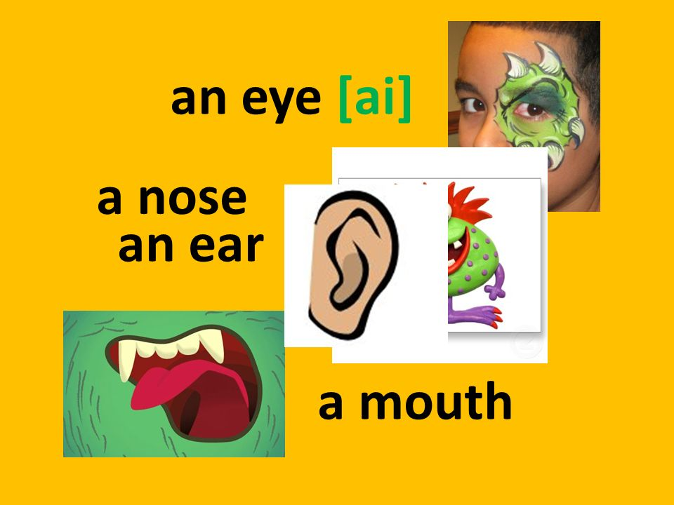 an eye [ai] a nose an ear a mouth